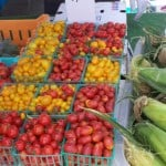 Fresh Produce at the State Street Farmers Market