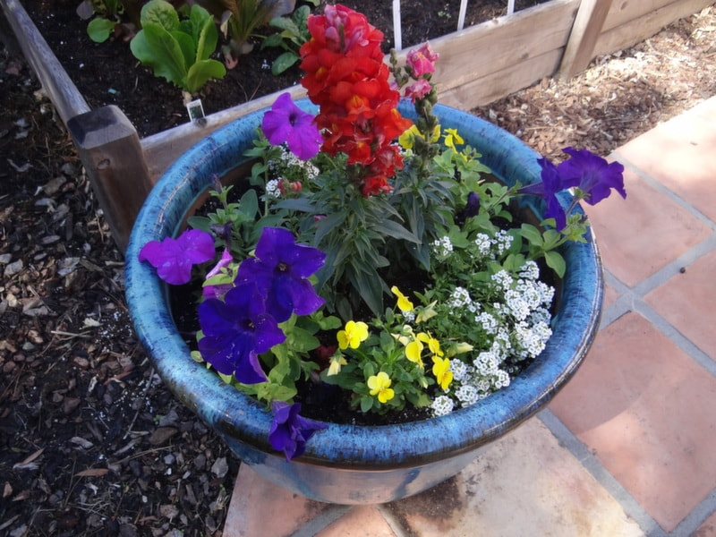 The 2014 San Diego Spring Home And Garden Show Is Coming