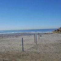 Dog Beach in Del Mar
