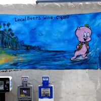Wall Art in Carlsbad_Porky
