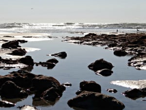Terramar Beach stones and ocean