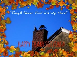 Happy Thanksgiving - turkeys on the roof