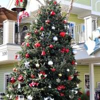 Carlsbad Vilage holiday tree