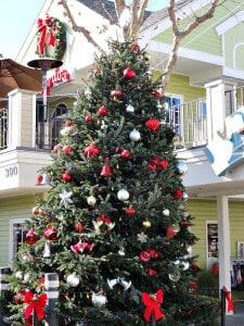 Carlsbad Vilage holiday tree