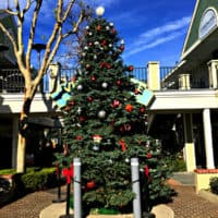 2018 Holiday Tree in Carlsbad Village