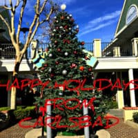 Happy Holidays from Carlsbad CA