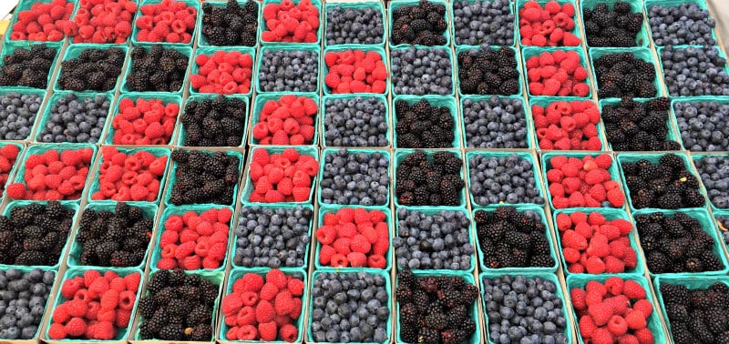 Fruit at the State Street Farmers Market